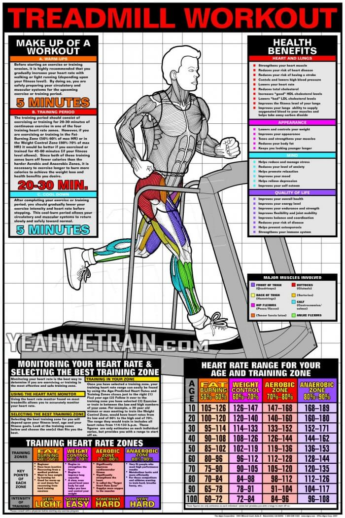 Treadmill Workout Cardio Fat Burning Sixpack Abs Exercise