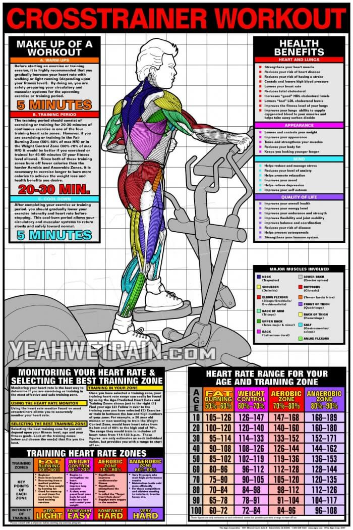... Sixpack Abs Exercise - Yeah We Train ! - Workouts, Exercises & More