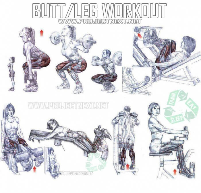 Butt Leg Workout - Healthy Fitness Exercises Gym Squat ...
