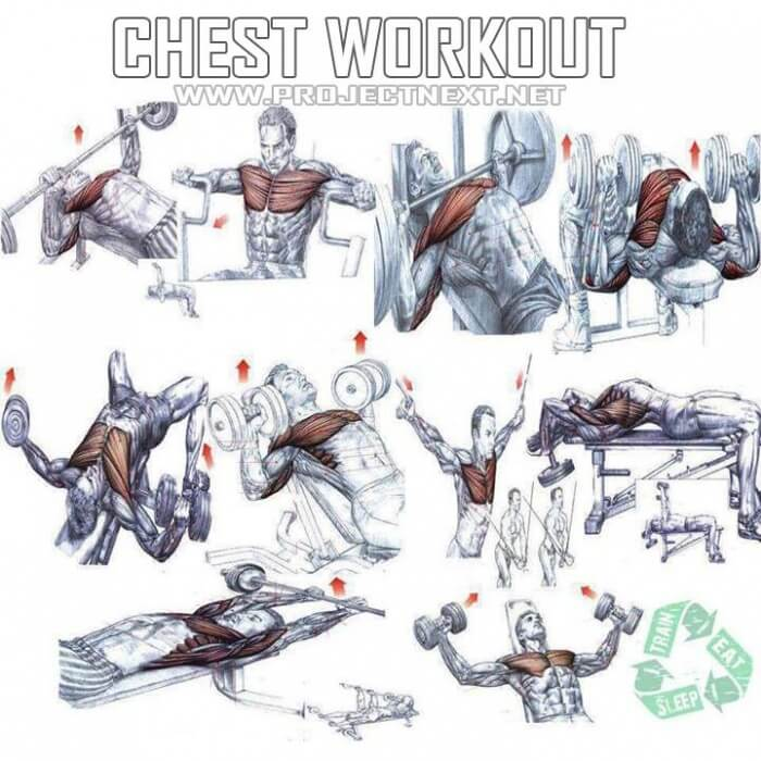 Chest Workout - Healthy Fitness Exercises Gym Bench Press