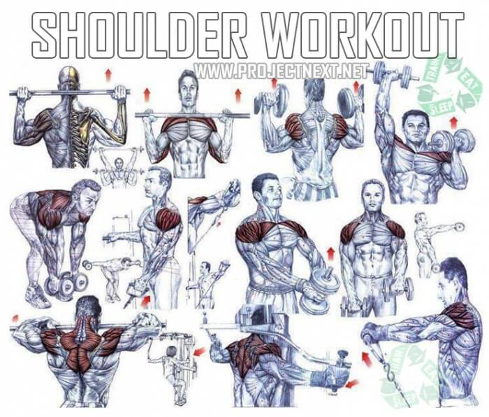 Shoulder Workout Healthy Fitness Exercises Gym Bicep Press
