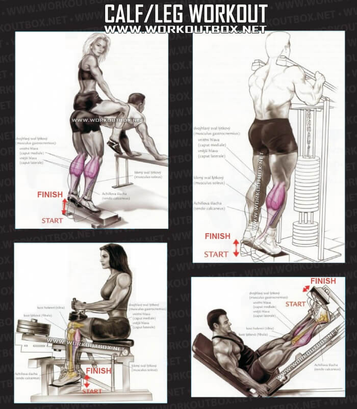 exercise machine for calves