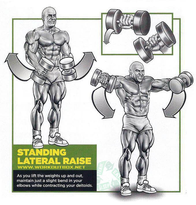 Shoulder Exercises - Standing Lateral Raise - Fitness