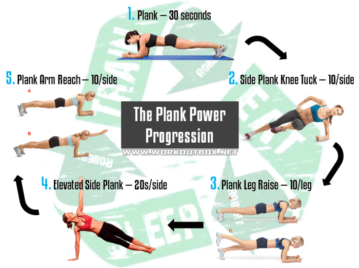 The Plank Power Progression Healthy Fitness Workout Ab Sixpack