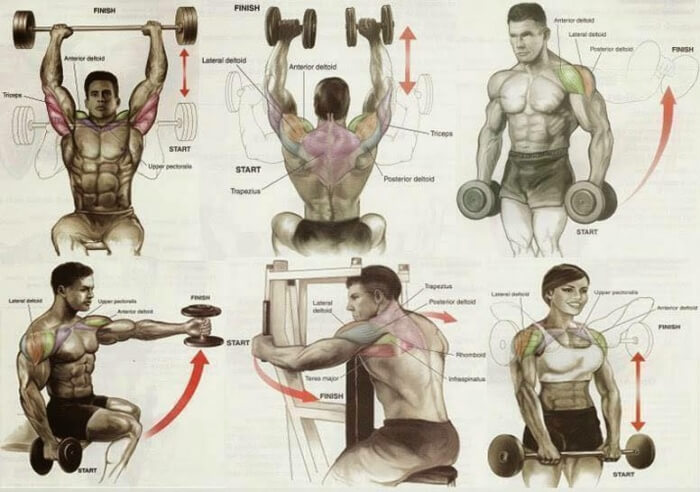 Shoulders Level 9000 Expert Training Plan - Healthy Fitness Exer
