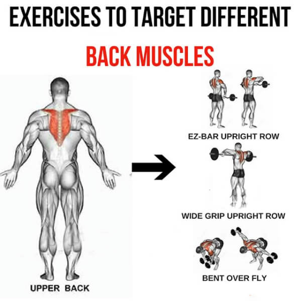 Easy At Home Muscle Building Workouts