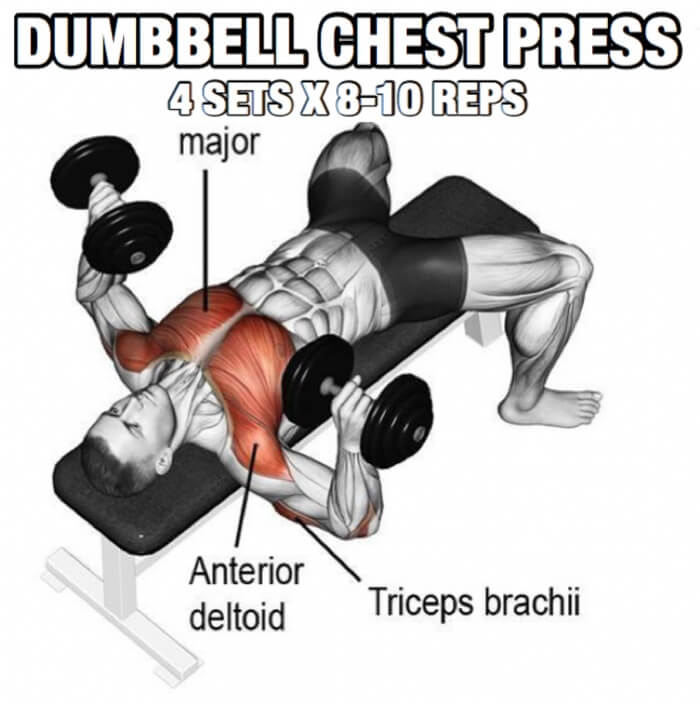 Chest Workout But Slightly Different Part 5 Dumbbell Pres