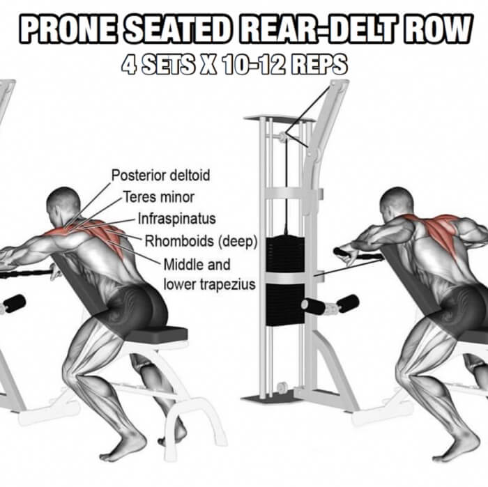 Back Workout But Slightly Different Part 1! Prone Seated Rear-De