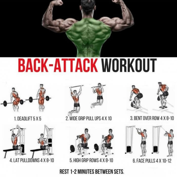 Back-Attack Workout Plan! Best Healthy Fitness Training
